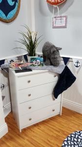 Cuddle Humpback on the dresser
