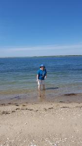 Nantucket Bay